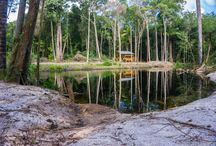 Redi Doti Suriname / Visit Redi Doti where the water and sand are red.