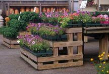 Garden Centre Ideas