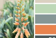Color Palettes / by April Leigh Smeraldo