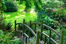 Wonderful green