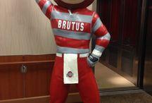 Brutus / Brutus / by Libby Woodfork