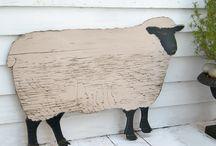 shop sheep