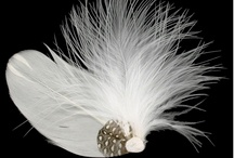 Feather's by Embellishment Gallery / Embellishment Gallery supplies feathers for all types of embellishments. Shop online at www.embellishmentgallery.com.au for your D.I.Y supplies.
