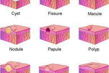 Dermatovenereology