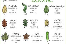 Astrología celta