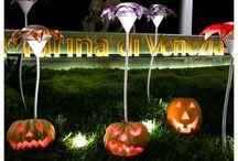 Halloween 2014 / Halloween2014