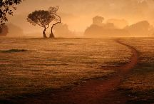 Africa / by Tienne