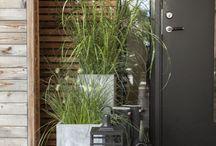 Husbygging fasade og inngang