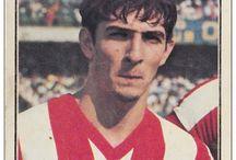 Lane Rossi Vicenza
