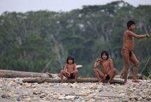 Amazonia / Amazonia, Amazon river and rainforest