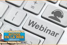Webinar y Webcast