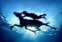 Ocean Inspired / by Selena Nevarez Perez