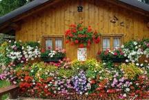 Kvetinkové domy