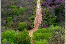 El Camino - the next journey