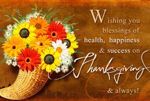 Happy Thanksgiving 2016 / Thanksgiving is around the corner – and while it's vital to give thanks for abundance, there is definitely room for laughter and funny. Too much gratitude is never enough, and here are some quotes and wishes to remind us of that.