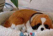 My Virtual Dog..DOGS
