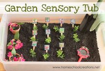 Nursery school garden theme
