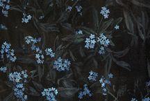Secret garden / series of oil paintings inspired by Francs Hodgson Burnett novel;  author: Lena Achtelik, Poland