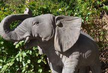 Tuinbeelden van Dieren / Uw favoriete dier gedetailleerd uitgewerkt in gesteente. Handgemaakt en dús uniek te noemen. Uiterst solide en een eyecatcher voor in de tuin.