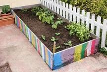 kid's gardening
