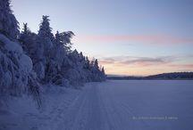 Voyager en Laponie au pays de Père Noël