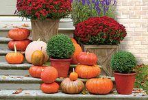 A Little Seasoning - Autumn