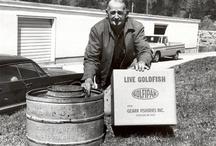 Ozark Fisheries History