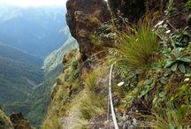 Tararua Range New Zealand
