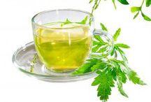Herbs/ Hierbas