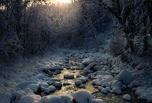 milieu /  nature