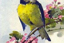 Impressions d'oiseaux