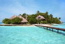Viagens - Maldivas / Descubra este paraíso! http://www.geostar.pt/viagens/maldivas/58
