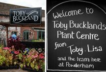 President's Day 2015 with Toby Buckland / Toby Buckland kindly hosted the event at his nursery at Powderham Devon in early September.