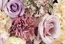 çiçekler ve bahçe