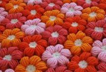モリーの花