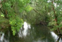 Irish Rivers, Lakes and Seas / Irish Rivers, fishing, water, bridges