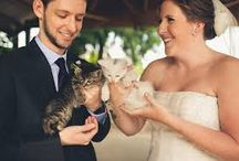 Weddings & Animals / So many brides & grooms choose to include their beloved animals in their wedding ceremonies.  This board features photos of bridal parties with pets