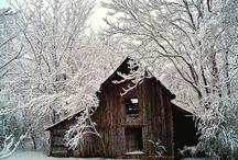 Seasons / by Danielle Hackney