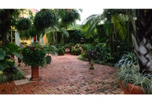 Beautiful Gardens & Ideas / Images that complement the mission of the Four Arts gardens: to provide inspiration to gardeners to create beauty in their own gardens. / by The Society of the Four Arts