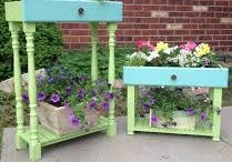 GARDEN plantings & ideas