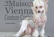 coffee table fashion book / A celebration of canine fashion, by La Maison Vienna Couture Canine