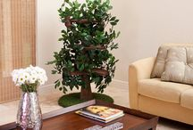 Cool Cat Tree Furniture With Leaves / Cool cat tree furniture with leaves for your kitties to hide in.