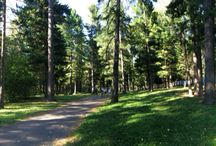 Relax / Park in Tomsk