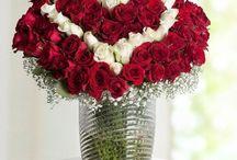 Maltepe-cicek / Maltepe Çiçekçi, Maltepe  Çiçek Gönder, Maltepe Çiçekçilik, Maltepe  Çiçek Siparişi, Maltepe  Çiçek, Sipariş Tel: 0216 384 7038, Maltepe'ye çiçek göndermek istiyorsanız web sitemizi tıklayın..