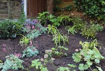 Planting Ideas and Borders / Planting ideas for your garden whether it be in full su, shade or a mix of the two! These planting pins show a variety of planting styles to take inspiration from!
