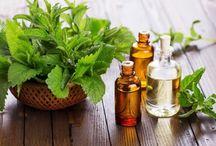 Alternative Healing/Medicine