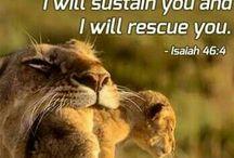 ♡ Special Bible verses ♡