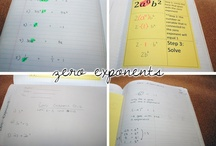 Interactive Student Notebook / Student Friendly Notes