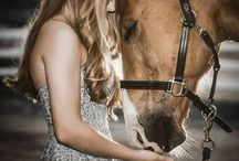 Ló és az ember kapcsolata