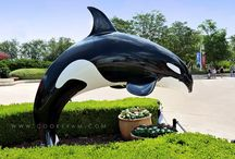 Sea World San Antonio / Tips and Tricks for visiting Sea World San Antonio.